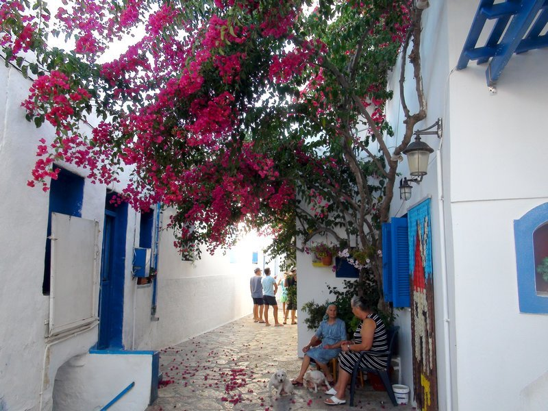 Typical small Greek street with bougainvillea